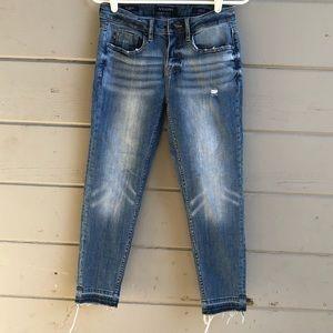 Vigoss the Jagger skinny distressed jeans 26